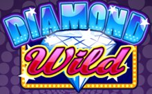 diamond wild logo