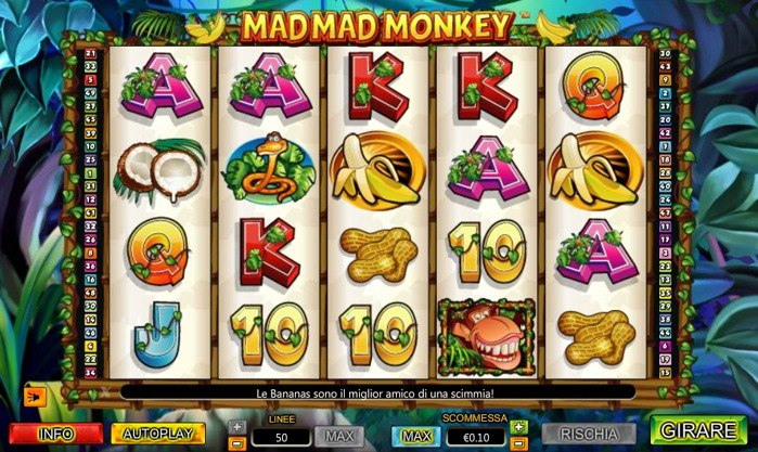 mad mad monkey slot machine