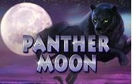 panther moon logo